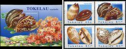 Tokelau 1996, Sea Shells, MNH Bloc And Stamps Set - Tokelau