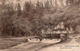 CPA   21   CHATILLON-SUR-SEINE---SOURCES DE LA DOUIX---1918 - Chatillon Sur Seine