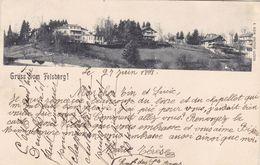 Suisse - Gruss Felsberg ! - Andere