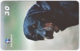 BRASIL I-624 Magnetic Telemar - Animal, Dog - Used - Brésil