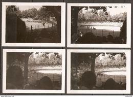 LOT DE 4 PHOTOS 1949 CORRIDA AUX ARENES DE MARSEILLE Et COURSE DE TAUREAUX - Deportes