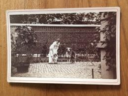 Ancienne Photo  Cartonnée Femme Chien - Oud (voor 1900)