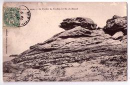 7325 - Ile De Sein ( 29 ) - Le Rocher Du Cochon à L'ile De Néroth - - Ile De Sein
