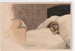 Sleeping Dog - Signed Mailick       (200708) - Autres Illustrateurs