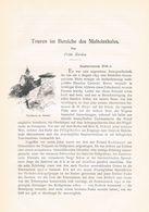 588-3 Frido Kordon Bergsteigen Im Bereiche Malteintales Artikel Von 1895 !! - Boeken, Tijdschriften, Stripverhalen