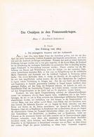 605 Zwiedineck-Südenhorst Franzosenkrieg Feldzug 1805 Artikel Von 1898 !!                                           . - Politie En Leger