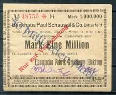 Notgeld / Scheck Aus BITTERFELD (#11) - Bankhaus Schauseil / Chemische Fabrik Griesheim - 50 Milliarden Mark - Acciones & Títulos