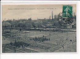 TROYES : Propriété GOMMERET-PETIT, Divisée En 80 Jardins, Côté Sud-Est - Très Bon état - Troyes