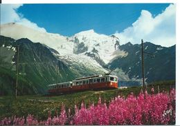 MASSIF DU MONT-BLANC  ( HAUTE SAVOIE )   LE TRAMWAY DU MONT-BLANC AU COL DE VOZA - Chamonix-Mont-Blanc