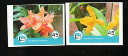 BRD - Privatpost - Nordkurier - 2 W - Orchidee Orchid Orchidée (Eckrand) - Private & Local Mails