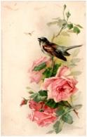 C. KLEIN - Moineau Et Roses - Klein, Catharina
