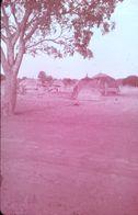 DIAPOSITIVE L'AFRIQUE DE L'ATLAS AU GOLF DE GUINEE L'AFRIQUE NOIRE Village NIGERIEN - Diapositive