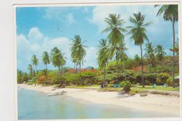 Barbade Halcyon Beach Club St Lucia West Indies - Postcards