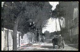 CAMINHA - MOLEDO - Praia De Moledo. ( Ed. João A. Dos Santos Gavinho)  Carte Postale - Viana Do Castelo
