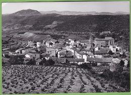 Belle Carte Photo Format CPSM CARAMANY Vue Générale Vigne 66 Pyrénées Orientales - France
