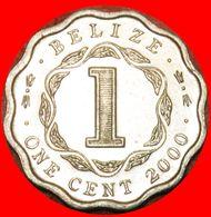 · COLONIAL PORTRAIT (1976-2016): BELIZE ★ 1 CENT 2000 UNC MINT LUSTER! LOW START ★ NO RESERVE! - Belize