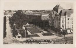 Romania - Timisoara - Vedere Din Cetate Cu Castelul Huniade - Parcul Si Bustul Regina Maria - Tram - Romania