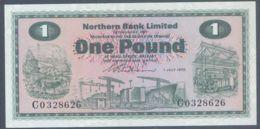 Ref. 4785-5288 - BIN IRELAND . 1970. NORTHERN IRELAND 1 POUND 1970 - Ierland