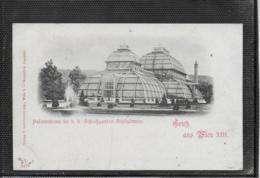 AK 0524  Gruss Aus Wien - Palmenhaus Im K. K. Schlossgarten Schönbrunn Um 1900 - Château De Schönbrunn