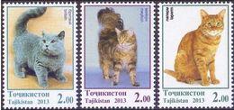 Tajikistan 2013 MiNr. 614 - 616 Tadschikistan Cats Pets ANIMALS 3 V  MNH** 7.20 € - Tadjikistan