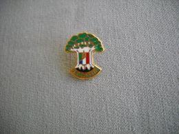 1687 Pin's Pins      VERT AZUR Espaces Verts  34 - Marcas Registradas