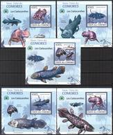 A{090} Comoros 2009 Fishes 5 S/S Deluxe MNH** - Komoren (1975-...)