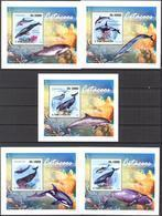 A{057} Sao Tome & Principe 2009 Whales 5 S/S Deluxe MNH** - Sao Tome And Principe
