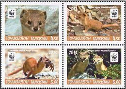 Tajikistan 2013 MiNr. 617 - 620  Tadschikistan Animals Mountain Weasel  WWF  4v  MNH** 20,00 € - W.W.F.