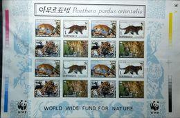 Korea DPR (North) 1998 WWF Cats Of Prey SIGNATURED PROOF,  VERY RARE - Corea Del Nord