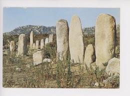 Menhir De Paliaggio - Environs De Sartène Corse - Dolmen & Menhirs