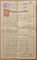 KUPNA POGODBA, SLOVENIJA, NOTAR KARL PLEIWEISS-NEČAK DR. JANEZA BLEIWEISSA, 1909, DIM. 21X34 CM - Factures & Documents Commerciaux