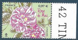 Rose De Mai BDF (2020) Neuf** - France