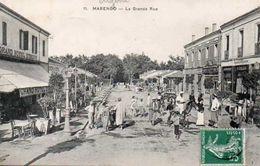 Marengo - Algérie
