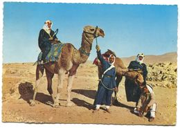LIBAN / LEBANON - BEYROUTH BEIRUT, CAMEL DRIVERS, OLD PC - Lebanon