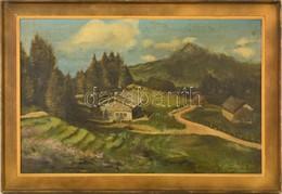 K. Niederhöfer Jelzéssel: Hegyvidéki Táj, Olaj, Vászon, Foltos, Keretben, 45,5x70 Cm - Non Classés