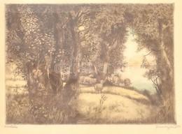 Remsey Jenő (1885-1980): Erdőszéle. Rézkarc, Papír, Jelzett, üvegezett Fa Keretben, 29,5x39 Cm - Non Classés
