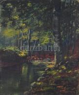 Olvashatatlan Jelzéssel: Erdei Patak. Olaj, Vászon, Kartonra Kasírozva, 49×40 Cm - Non Classés