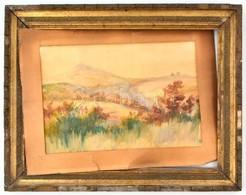Jelzés Nélkül: Őszi Táj. Akvarell, Papír. Sérült Fa Keretben, 22,5×32,5 Cm - Non Classés