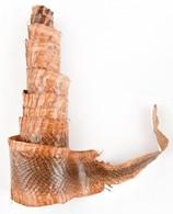 Kígyóbőr Kikészítve 140 Cm - Autres Collections