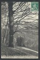 +++ CPA - BRUSSEL - BRUXELLES - Bois De La Cambre - Ravin Et Pont Rustique // - Foreste, Parchi, Giardini