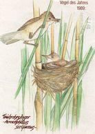 DC2731 - Naturschutzverband Teichrohrsänger Vogel Vögel 1989 - Oiseaux