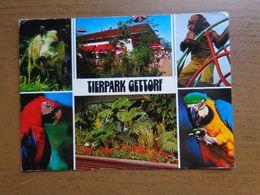 Dierenpark - Zoo / Tierpark Gettorf -> Written - Animaux & Faune