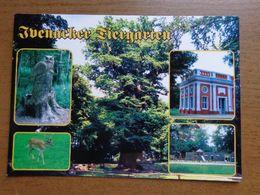 Dierenpark - Zoo / Ivenacker Tiergarten -> Unwritten - Animaux & Faune