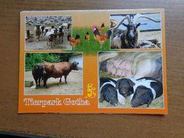 Dierenpark - Zoo / Tierpark Gotha -> Unwritten - Animaux & Faune