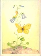 Thème -  Illustration - Ferd.  V Lampe - 5 Cartes - Papillon - Chèvre - Libellule - Marmotte - Illustrateurs & Photographes