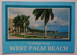 WEST PALM BEACH, Florida - Tree Lined Boulevard  - Vg - West Palm Beach
