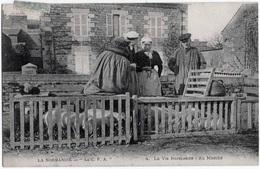 Lot 5 CPA Petits Métiers Beurre Cochons Traite Fileuse Dentelle 1905-1910 état Superbe TOP - Artisanat