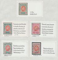 Page De Collection - Croix Rouge : Petite étude De Variété çàd 132-V1, 132-V2 Et 133-V1 Oblitéré + 132A * - 1914-1915 Rotes Kreuz