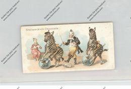 CIRCUS / ZIRCUS, Stollwerck - Sammelbild, Clowns Und Zebras - Zirkus