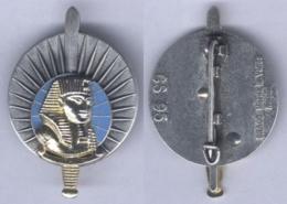 Insigne Du Brevet D'Interprète Militaire - Armée De Terre